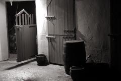 kushi_stables1